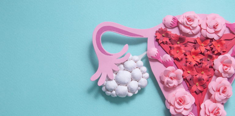 female reproductive system made out of paper flowers