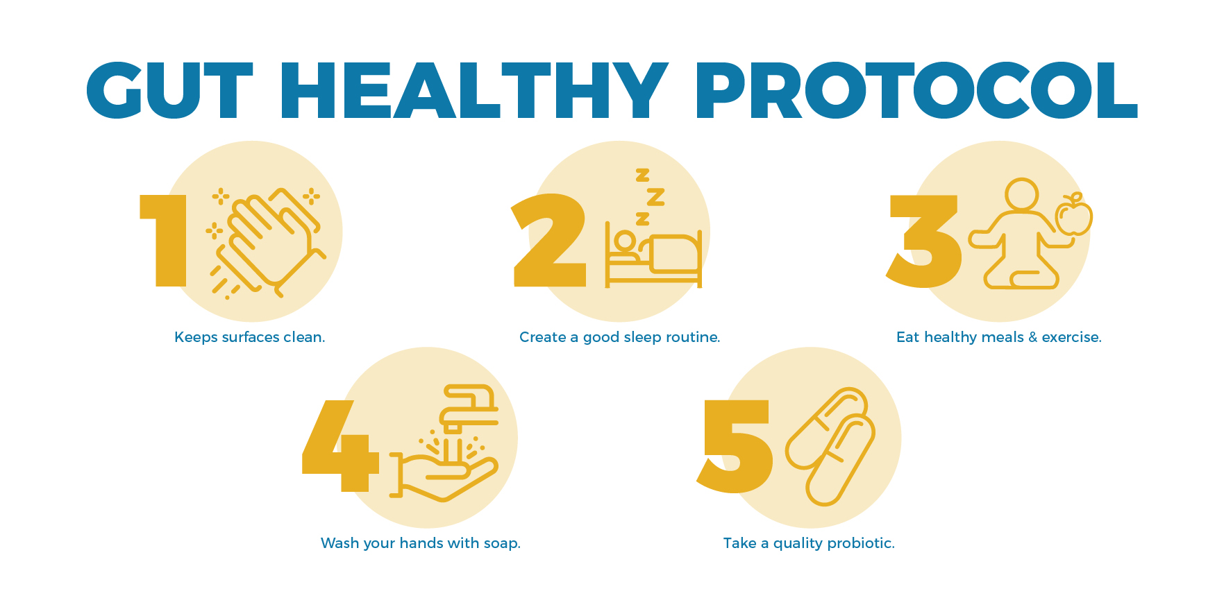 Healthy Gut Protocol Instructions